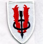 173rd ARS 'Shield' Patch
