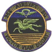 356 Airlift Squadron Patch (Subdued)