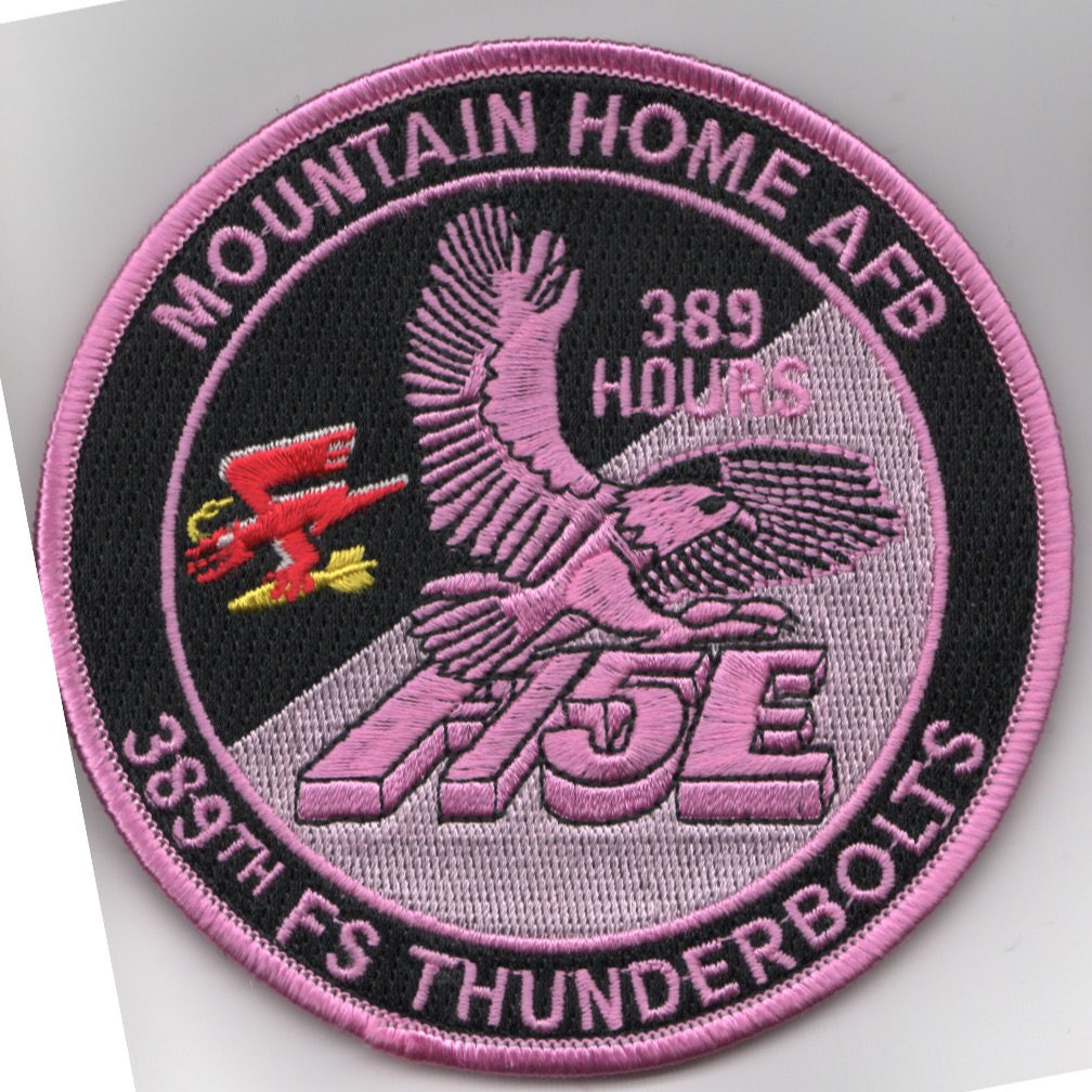389FS F-15E 'Tinsel' Patch (PINK/389 Hours/V)