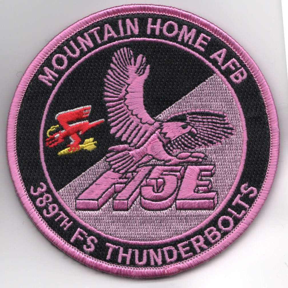 389FS F-15E 'Tinsel' Patch (PINK/NO Hours/V)