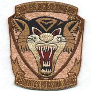 391FS Historical 'Tiger-Face' Patch (Des)