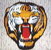 391FS Tigerhead Patch (HUGE)