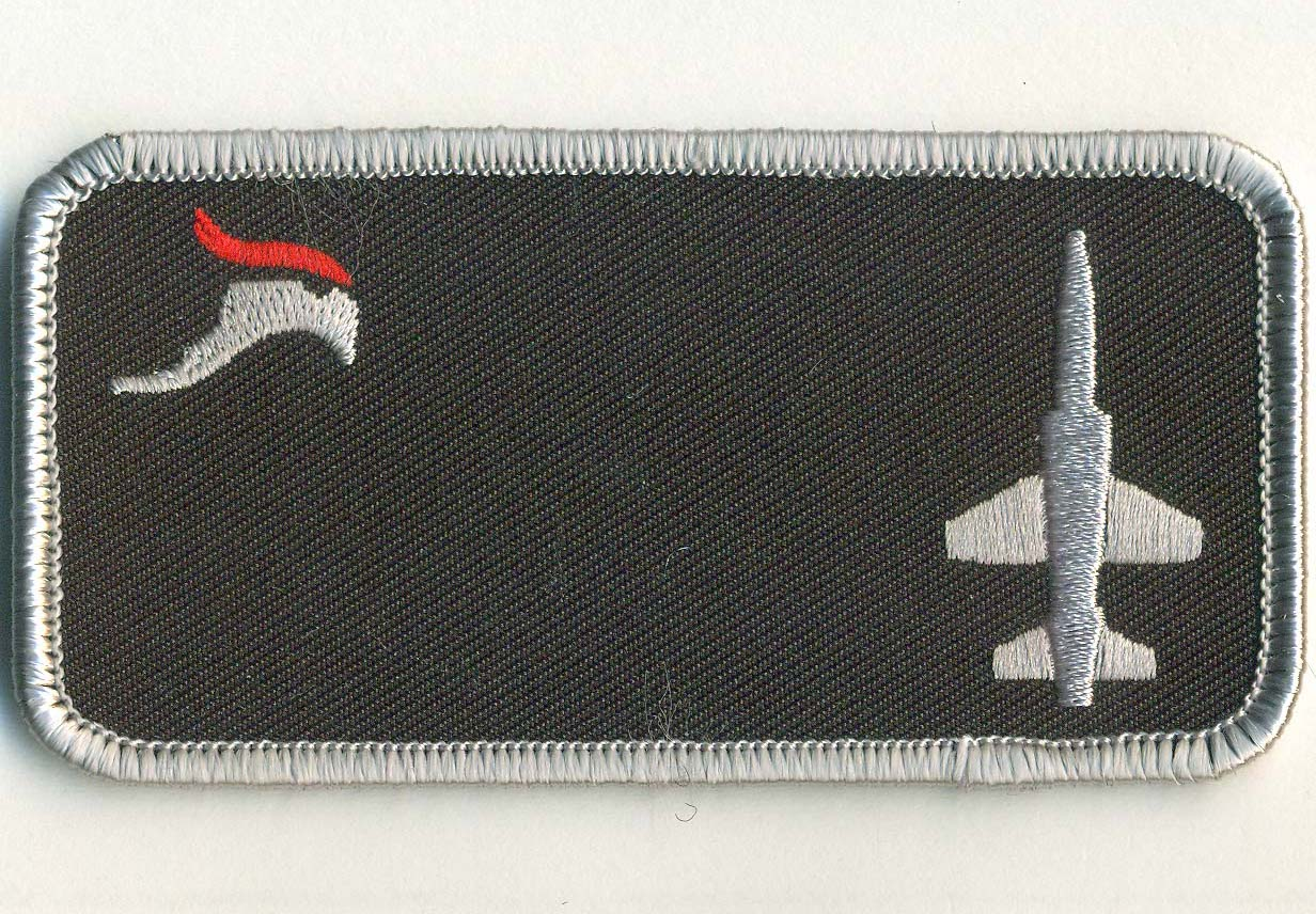 50 FTS 'RAPTOR' Nametag (Sm Bird/T-38)