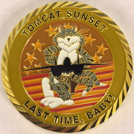 F-14 Tomcat Association 'Sunset' Coin (Front)