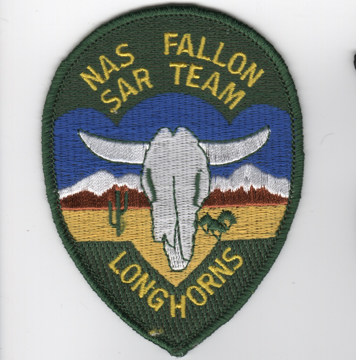 NAS Fallon SAR Team Patch