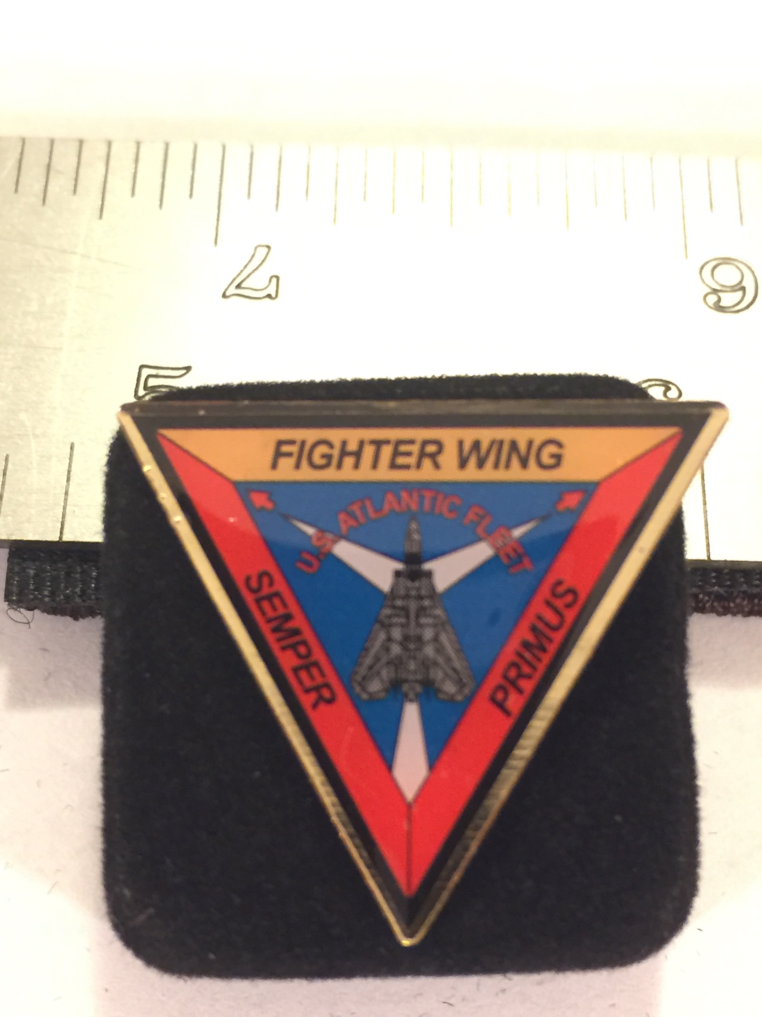 Lapel Pin: FITWING