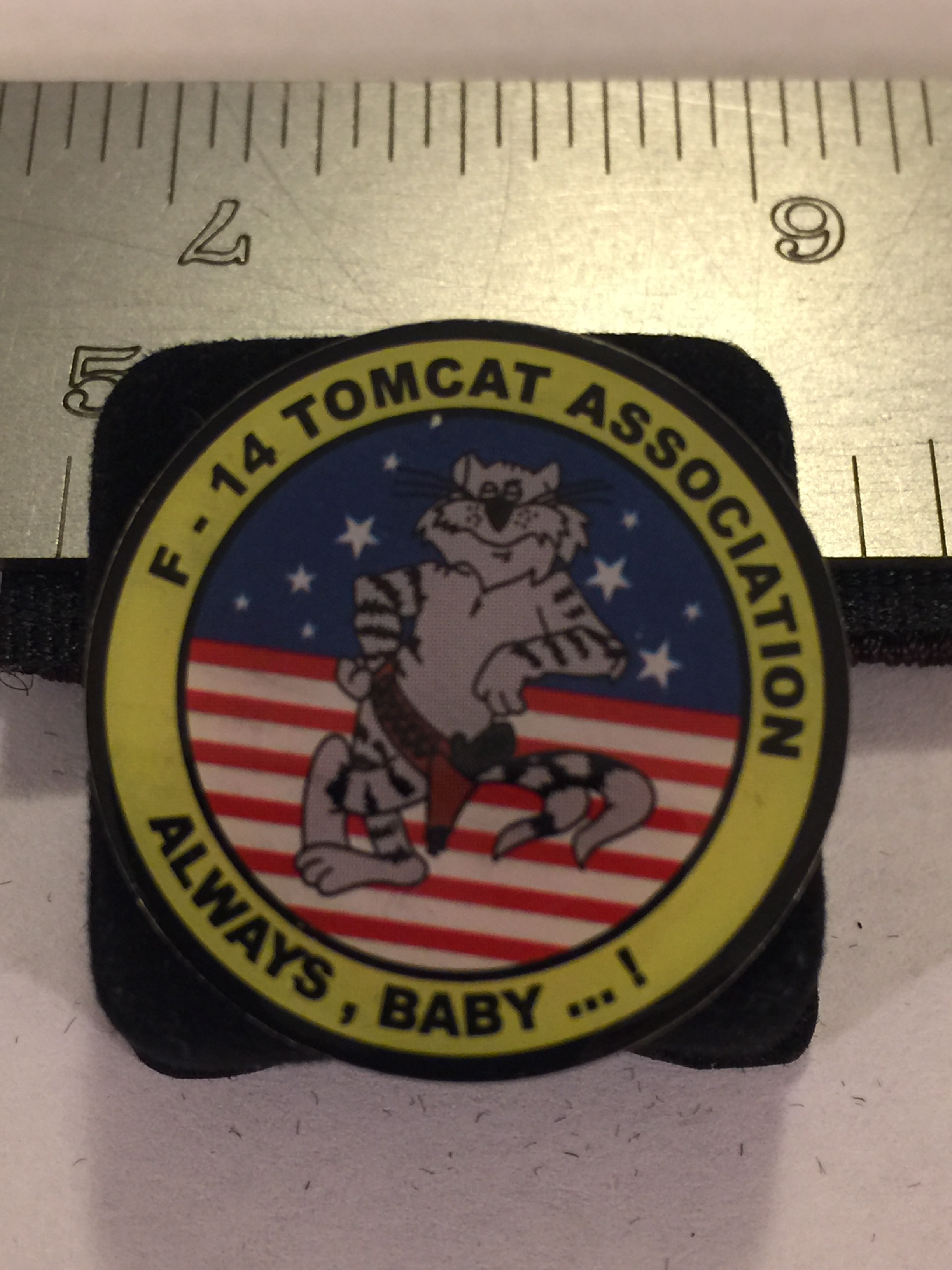 Lapel Pin: Tomcat Association (Lg)