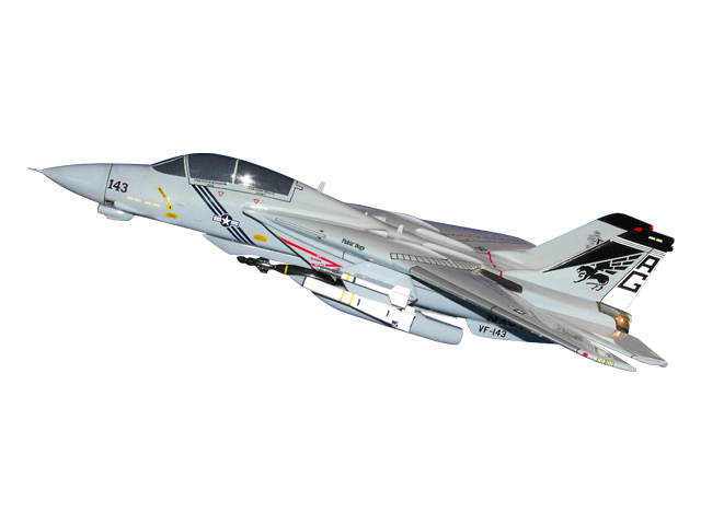 F-14/VF-143 Aircraft (Large Model)