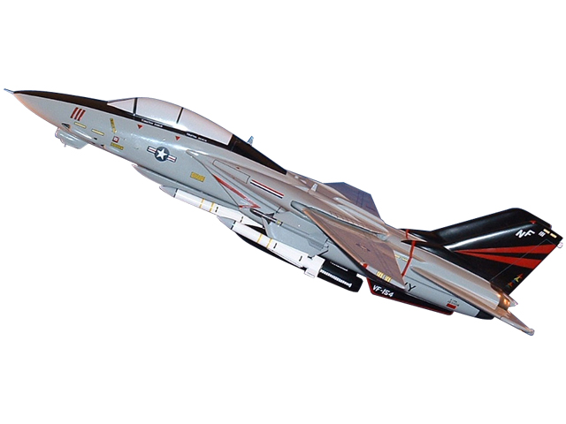 F-14/VF-154 Aircraft (Large Model)