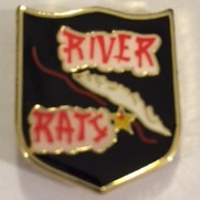 Lapel Pin - RRVFPA (Small/Black)