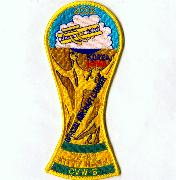 CV-63/VF-154 Soccer Cup Cruise Patch