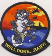 F-14 'Well Done . . . Baby' Felix Patch