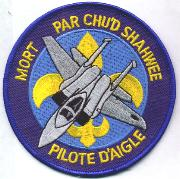 122nd Fighter Squadron Patch