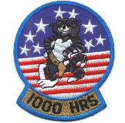 F-14 1000 Hours Felix Patch