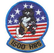 F-14 1500 Hours Felix Patch