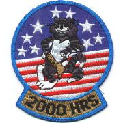 F-14 2000 Hours Felix Patch