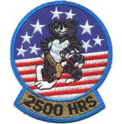 F-14 2500 Hours Felix Patch