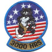 F-14 3000 Hours Felix Patch