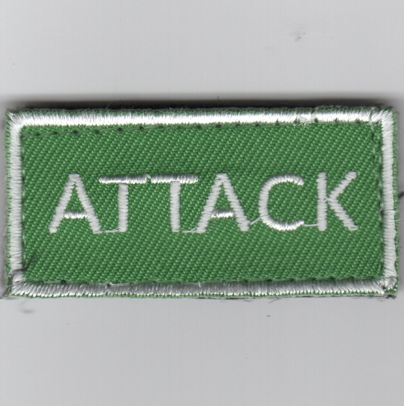 Flight Suit Sleeve - ATTACK (Green)