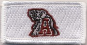 FSS - U of Alabama Tab
