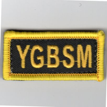 Flight Suit Sleeve - YGBSM (Yellow/Black)