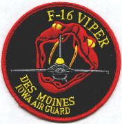 124FS/IA ANG Viper Patch