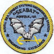 Naval Sea Combat Systems Patch