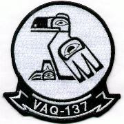 VAQ-137 Squadron Patch (White)