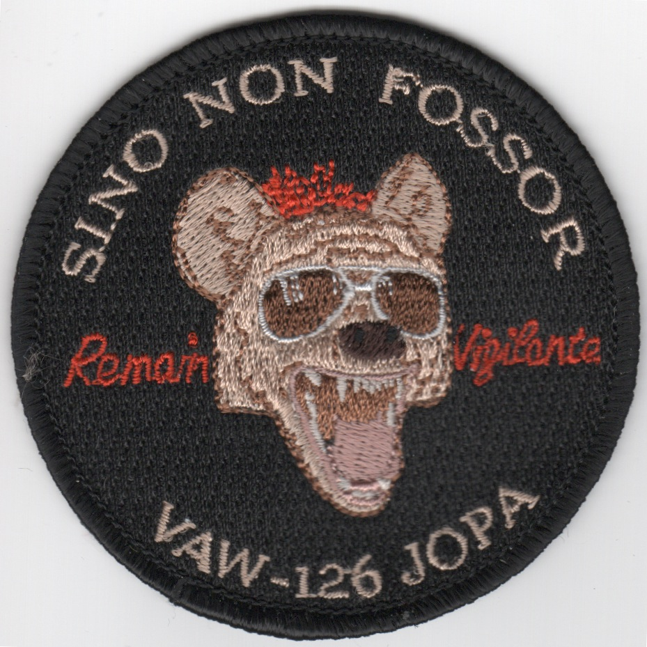 VAW-126 'JOPA' Patch (Skull)