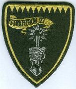 VFA-27 Shield Patch (Large)